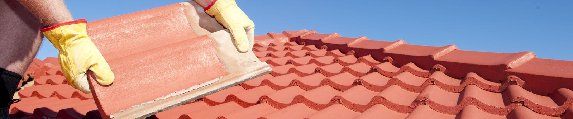 Die Dachdecker-TPL